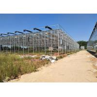 Wholesale Venlo Glass Greenhouse , Multi Span Greenhouse For Hydroponics System from china suppliers