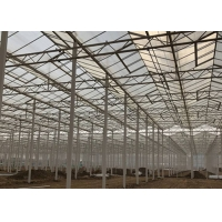 Wholesale Sided Ventilated Cooling Pad Multi Span Pc Sheet Greenhouse from china suppliers