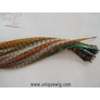 Wholesale Feather Hair Extensions from china suppliers
