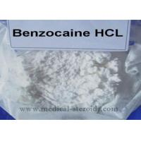 Benzocaine HCL Local Anesthetic Drugs 23239-88-5 For Pain Relief 99% Purity Benzocaine Hydrochloride