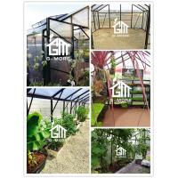 G-MORE Titan 4M width greenhouse internal.jpg