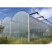 Wholesale Agricultural Multi Span 10m 200 Micron Ldpe UV Film Greenhouse from china suppliers