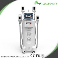 China Fat freezing and body slimming with the 2 handles can work together on sale