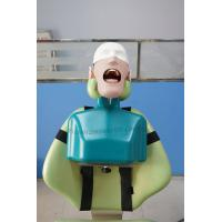 Wholesale Top Quality Dental Manikin Head with Torso for Dental Chair from china suppliers