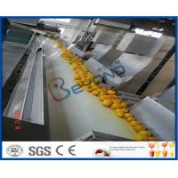 Wholesale Orange Juice Factory Orange Juice Processing Plant With Juice Extraction Equipment from china suppliers