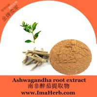 China High Quality ashwagandha root powder Extract  for Men Health 1%;2.5%;3%;5% Withanolides on sale