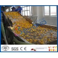 China Stepless Shift Fruit And Vegetable Processing Device , Fruit And Vegetable Washer Machine on sale