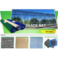 Wholesale Anti insect net, anti bug net, anti aphid net, mesh anti insect net,shade sail,shade net, anti hail net,protection net from china suppliers