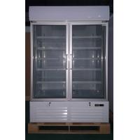 China 1000L Supermarket Glass Door Display Freezer With Inner Vertical LED Lighting on sale