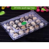 Transparent Recyclable Disposable Plastic Quail Egg Tray 4x6 Range for sale