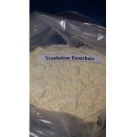 Best Trenbolone Enanthate Muscle Gaining Steroids Yellow Powder Muscle Growth wholesale