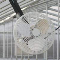 Wholesale Circulation fan from china suppliers