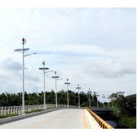 Magnetically Levitated Wind Turbine 60W LED Wind Solar Hybrid Street Light System