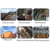 China 1-100tpd palm oil processing plant on sale