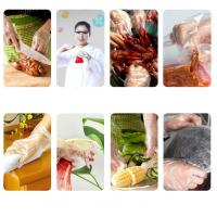 Wholesale Disposable Clear Polyethylene Disposable Gloves / Hand Gloves For Food Industry from china suppliers