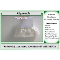 Wholesale 99% Assay Atipamezole Supplements For Weight Loss CAS 104054-27-5 from china suppliers