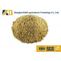 Wholesale Full Fat Organic Fish Meal Fertilizer / Food Grade Fish Meal Enhance Poultry Nutrition from china suppliers