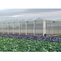 Wholesale Hydroponic Planting Agricultural Polycarbonate Greenhouse from china suppliers