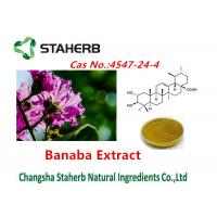 China Corsolic Acid Banaba Extracts Pure Natural Plant Extracts Cas No.4547-24-4 on sale