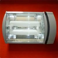 Wholesale Lvd Induction Tunnel Light (RZHL404) from china suppliers