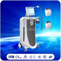 Wholesale Non Invasive Vertical Liposonix HIFU Machine For Body Slimming / Weight Loss from china suppliers