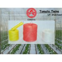 Wholesale 1mm 1.5mm Colorful Polypropylene Twine For Tomato Tying / Poly Twine Rope from china suppliers