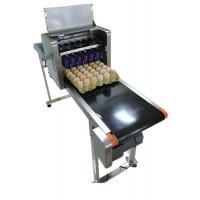 Poultry Egg Date Coding Machine Automatically Updated With LCD Touching Screen