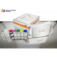 Wholesale Leptin / LEP Human ELISA Kit with 0.05ng/ml - 10ng/ml Standard Curve Range from china suppliers