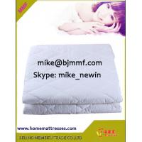 China Hotel mattress cover for bed bugs, bed protector,elastic mattress protector on sale