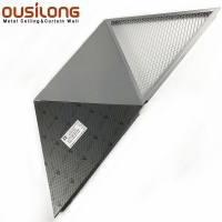 Wholesale 0.5mm Triangle Mesh Clip Snap In Ceiling For Commercial Building from china suppliers