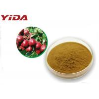 Wholesale 535 83 1 Hawthorn Extract Powder C6H13NO3 Medicine Grade Prevent Atherosclerosis from china suppliers