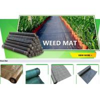 Wholesale Weed Barrier, weed fabric, Anti Grass Cloth,Ground Cover Vegetable Garden Weed Barrier Anti Uv Fabric Weed Mat,weed mat from china suppliers