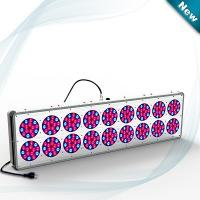 China Top quality LED light grow light 650W for tomato/potato/flower/vegetable on sale
