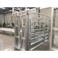 Quality Durable Cattle Livestock Crush / Livestock Fence Panels 3000mm Length for sale