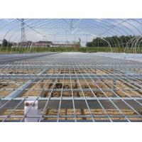 Wholesale Greenhouse Seedbed Welded Mesh Fence Corrosion Resistance 30*130mm Mesh Hole from china suppliers