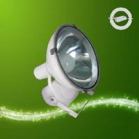 Wholesale Flood Light with Magnetic Induction Lamp (RZHL307) from china suppliers