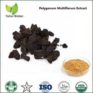 Wholesale polygonum multiflorum extract,fo ti extract,polygonum multiflorum root extract from china suppliers
