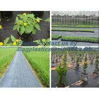 Wholesale Water management weeb control pavement preservation courtyard beautify anti insect anti mold seedbed protection vegetati from china suppliers