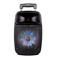 Wholesale 12 Inch Bluetooth Function Rechargeable Portable Trolley Speakers With Led Lights from china suppliers