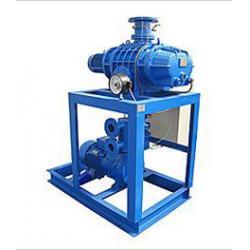 China Transformers Vacuum Pump Unit,Vacuum Pump System for sale