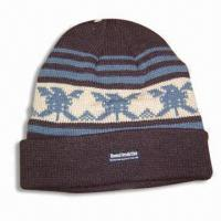 Wholesale Acrylic Jacquard Hat with Thinsulate Lining from china suppliers