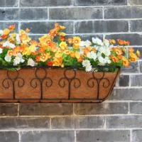 Wholesale Coco Wall Planter from china suppliers