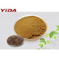 Wholesale Weight Losing Raw Materials Cassia Extract / Obtuseleaf Senna Seed Fat Reduction Powder from china suppliers