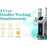 China China top manufacturer Beijing Nubway whole body Slimming fat freeze cryolipolysis machine for sale on sale