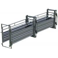 China Easy Access Portable Cattle Alleyway , 14 Gauge Sheet Adjustable Cattle Alley on sale
