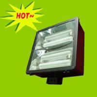 Wholesale Electrodeless Light Flood Lamp 2*200W (RZHL309) from china suppliers