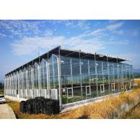 Wholesale Multi Span Fully Automatic Greenhouse Large Size With Hydroponic System from china suppliers