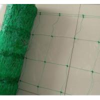 Quality Custom HDPE Plant Support Netting , Vegetable Support Net For Legume for sale