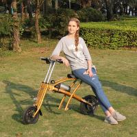 Wholesale CE Light Weight Folding Electric Mountain Bike , Foldable Electric Bicycle Small Size from china suppliers