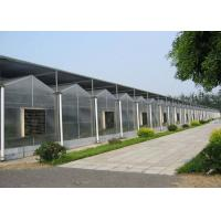 Wholesale Garden Flowers PC Sheet Greenhouse , Farm Vegetables Flowers Multi Span Greenhouse from china suppliers